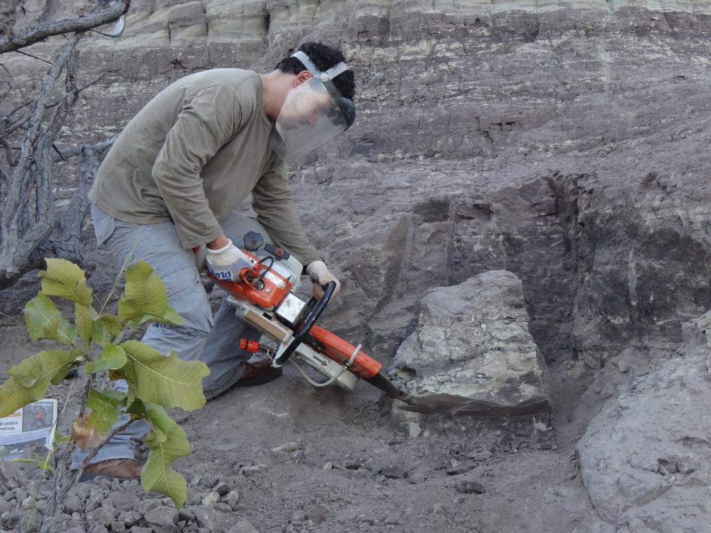May/2012 field trip - Marcos at <i>Batrachomimus</i> digging