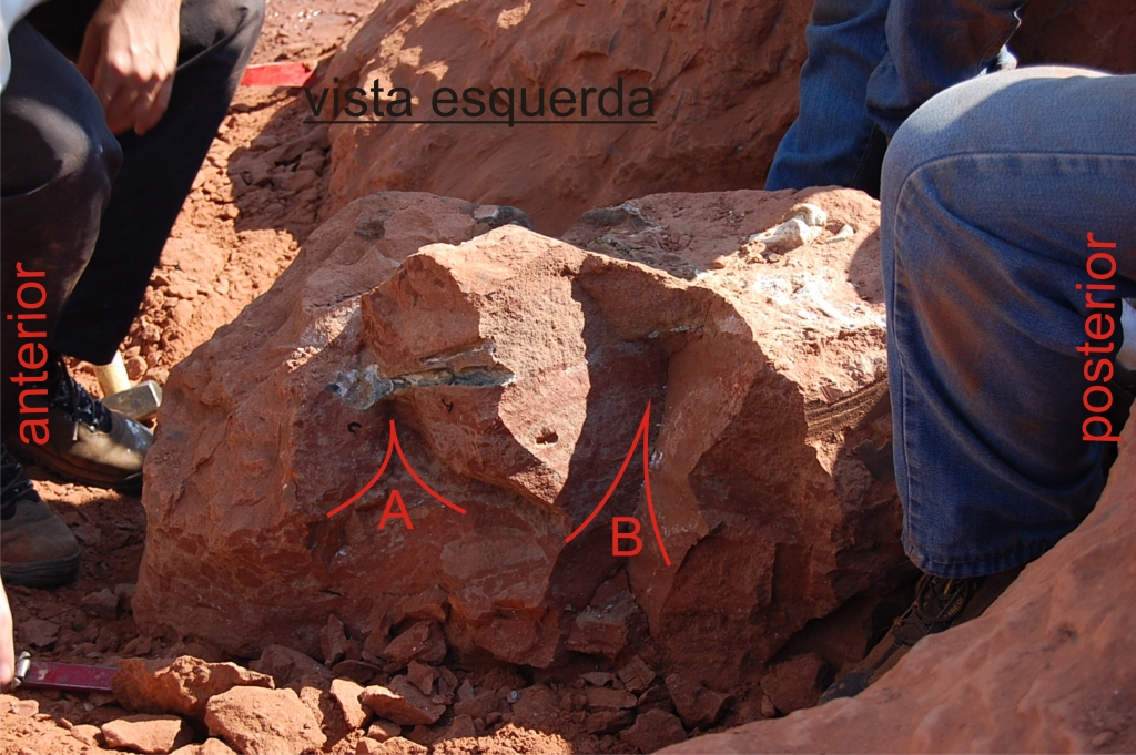 May/2009 field trip - Suddenly, red letter and line apear in the outcrop